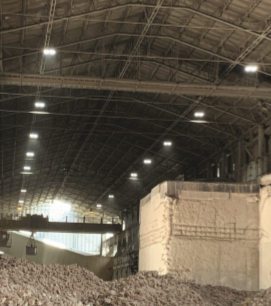 Luceco's Ceres a 'concrete' success in Chihuahua!