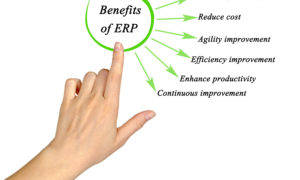 Wholesale evolution: choosing the right ERP software